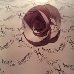 Hayari Paris: een exceptionele rozencollectie: Rose Chic, Amour Elegant, FeHom