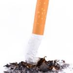 De gedistingeerde tabakclub: Korres Premium II L'Eau de Parfum