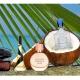 Kokosnootbeladen fantasieën: enkele kokosnoot zonnecrème-parfums